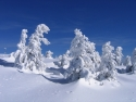Wintertraum Brocken